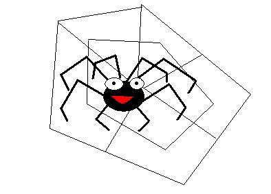 BJJ spider by Rachel Passfield