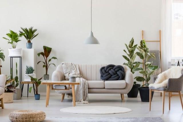 8 Cara Mudah Bikin Rumah Terlihat Mewah