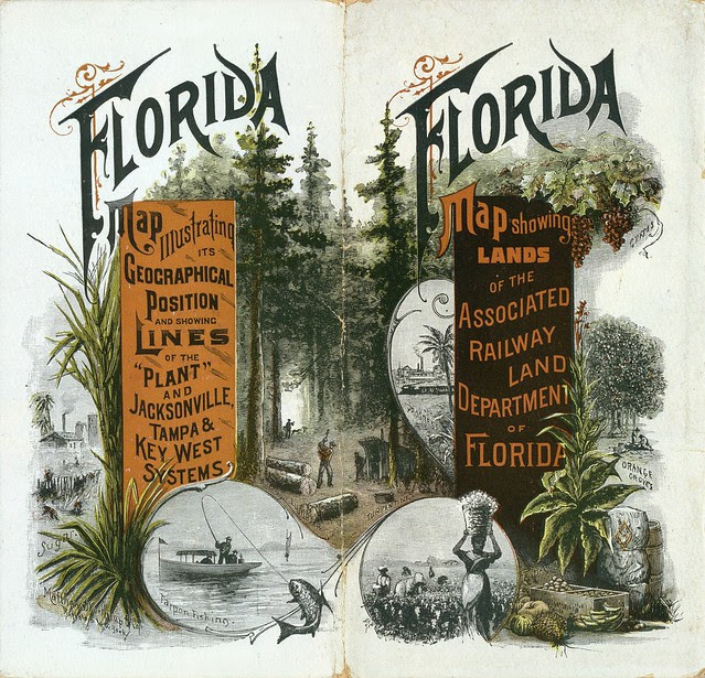 Township map of Peninsular Florida issued by the Associated Railway Land Department of Florida 1890