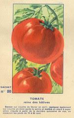 legume80 tomate