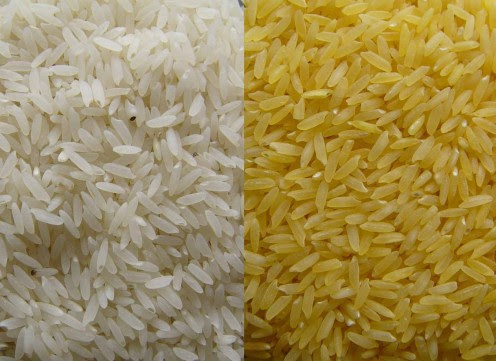 White Rice & Golden Rice