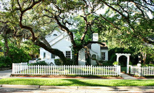 Great Design Plant: Southern Live Oak Offers an Unbeatable Canopy