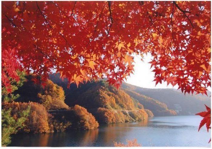 Momiji Lake, Nagano