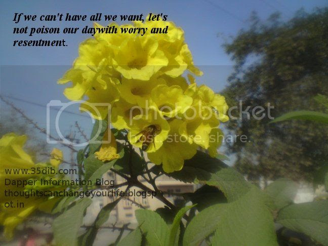If we can't have all we want. let's not poison our day with worry and resentment