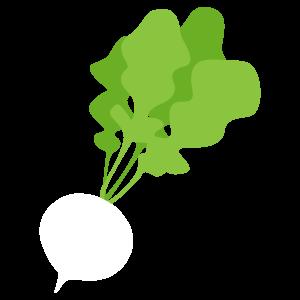 大根のイラスト1 花植物イラスト Flode Illustration フロデイラスト