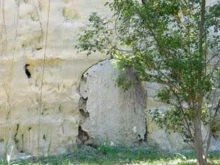 Túnel tapiado por desuso (foto de Internet)