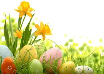 Wielkanoc 2018 Dodatkowe Wyjazdy Wiza Siemiatycze Regularna