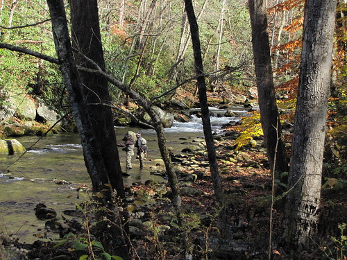 IMG_6748_Little_River_Trail