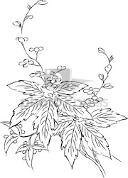 Gambar Flora Dan Fauna Yang Mudah Digambar Dan Berwarna Info Terkait Gambar