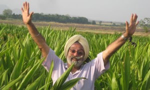 indian farmers in africa 300x180 photo
