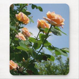 'Alchemist' Rose Mousepad