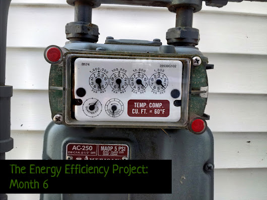 The Energy Efficiency Project: Month 6