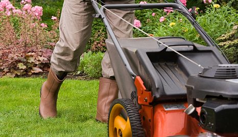 Pest Control and Lawn Care Services | All Green Provo, Utah