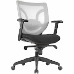 Express High Back Silver Mesh Ergonomic Multi-Function Task Chair (BIFMA)