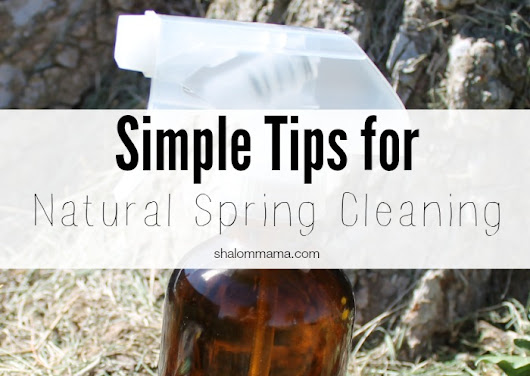 Simple Tips for Natural Spring Cleaning - Shalom Mama