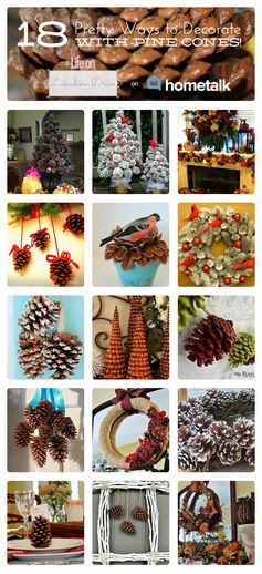 pine cone crafts on Hometalk      Life on Lakeshore Drive http://paulams.weebly.com/blog.html