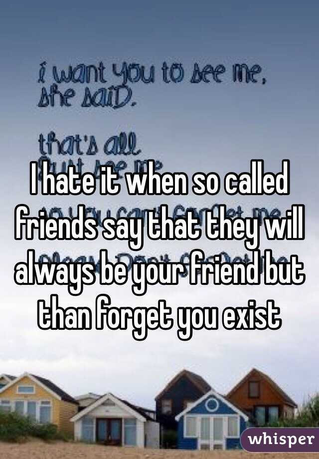 I Hate It When So Called Friends Say That They Will Always Be Your