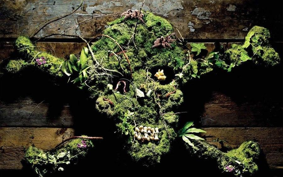 Poison Garden Skull
