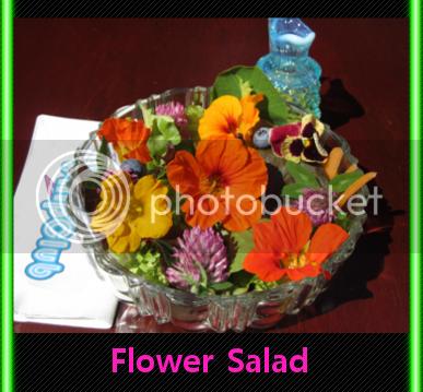 nastusium pansy clover salad