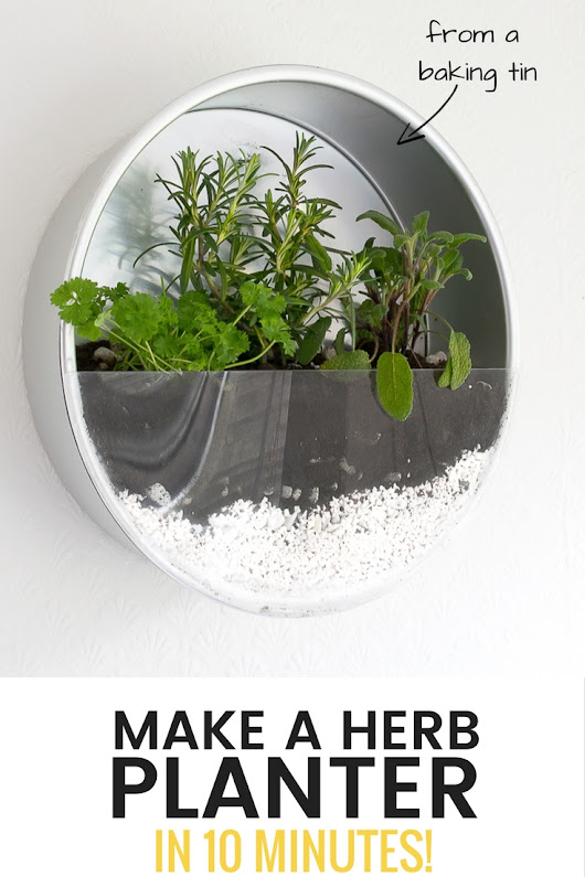 Make An Indoor Herb Planter - In 10 Minutes!