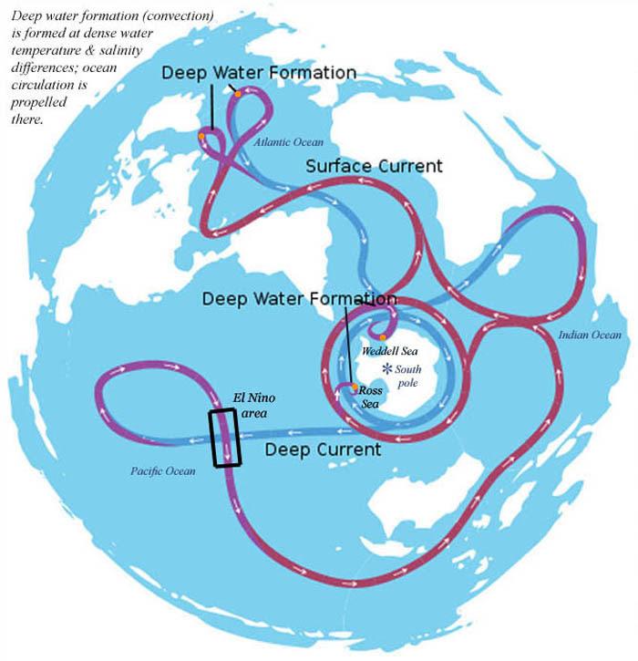 De thermohaliene-circulatie beschrijft de zeestroom wereldwijd.