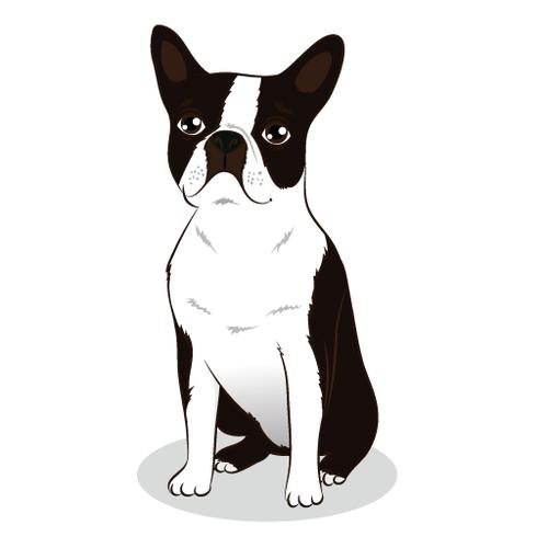 Dessine Moi Un Bouledogue Français Best Bulldog Blog