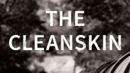The Cleanskin review: Laura Bloom's unsettling novel of buried intrigues