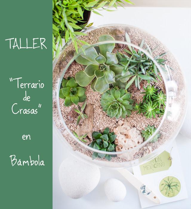 """Taller """"Terrario de Crasas"""""""