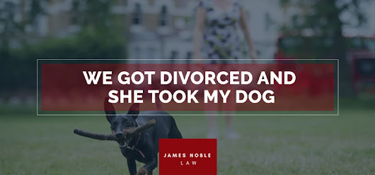 We Got Divorced and She Took My Dog | James Noble Law