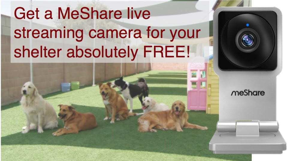Get a MeShare live streaming camera for your shelter absolutely free