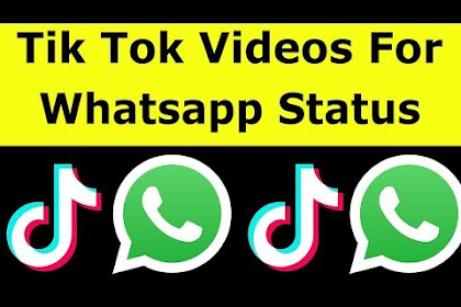 How To Share Tik Tok Video On Whatsapp Status & Download Videos WithoutWatermark-2019