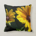 Black Eyed Susans - Daisies Throw Pillow