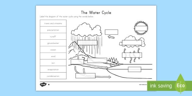 Blank Water Cycle Chart Barba