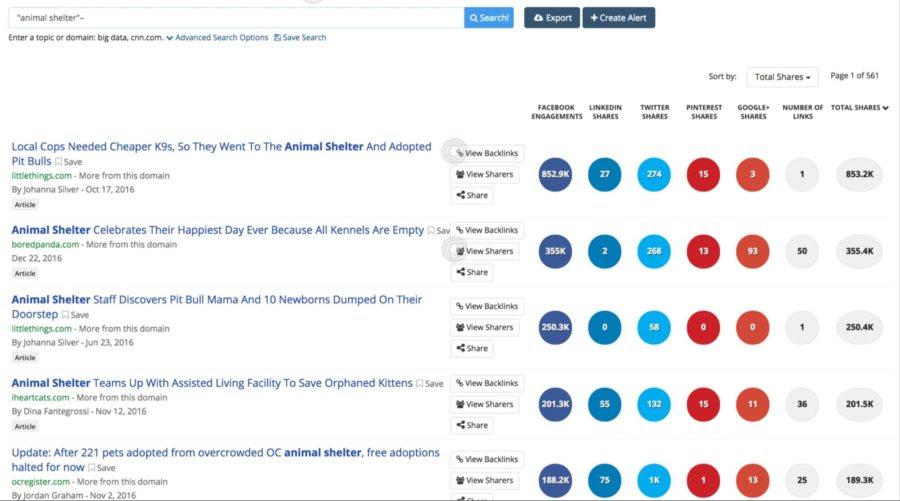 BuzzSumo – Search Topics by Keywords