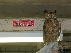 show us your hooters