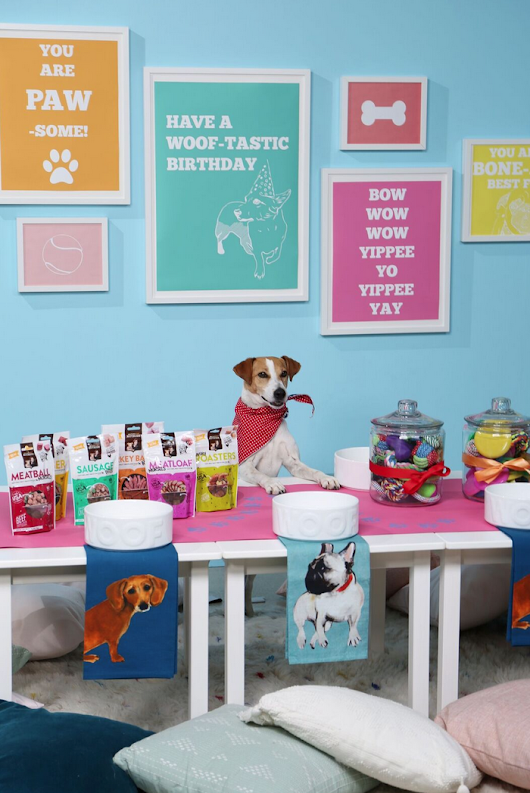 How to Host a Happy Birthday Puppy Paw-ty with Nutrish! | ...love Maegan