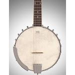 Washburn B6 6-String Open Back Banjo