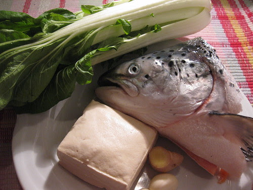 fish head tofu soup