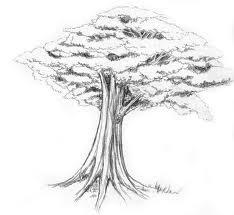 http://soaltespsikotes.files.wordpress.com/2011/03/menggambar-pohon.jpg?w=468