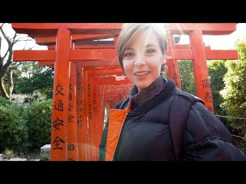 "The First Vegan Tour in Japan: ""Vegan & Organic Food Tour"" in Tokyo"