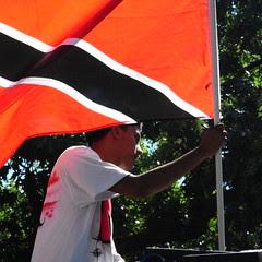 Flag and Oaks