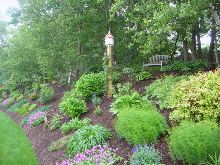 Landscaping Ideas Back Yard Slopes