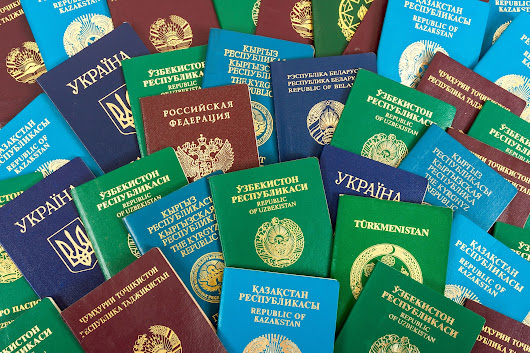 How Does the US Passport Application Process Differ From Other Countries - Passport Info Guide