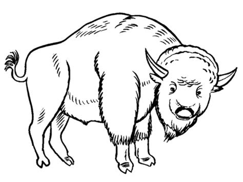 grassland animals coloring pages bubakidscom