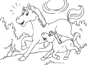 Dibujos De Caballos Para Colorear Paracolorearnet