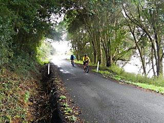 McCarthy Shute Road