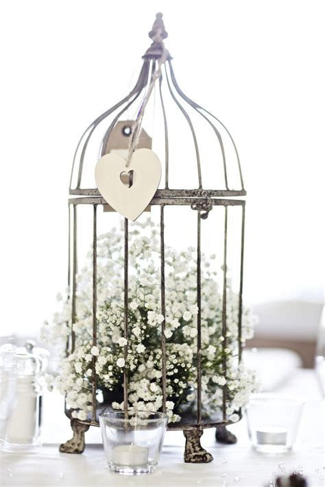 25  best ideas about Bird cage centerpiece on Pinterest