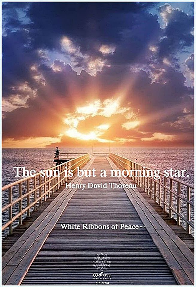 Good Morning The Sun Is A Morning Star Pictures Photos And Images