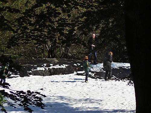 boules de neige.jpg