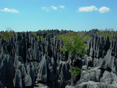 View of The Grand Tsingy of Bamara in Madagascar. 2004